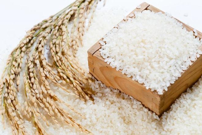 Sản lượng gạo thế giới